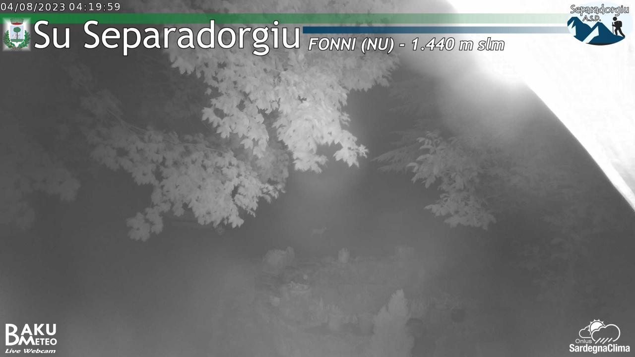 Webcam Separadorgiu 1460 m slm